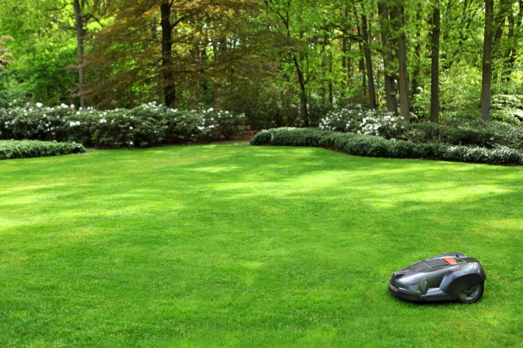 Er en robotplæneklipper det rigtige valg for dig og din have?